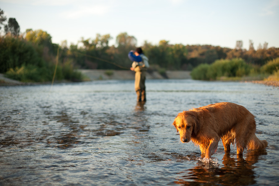 fly_fishing-10